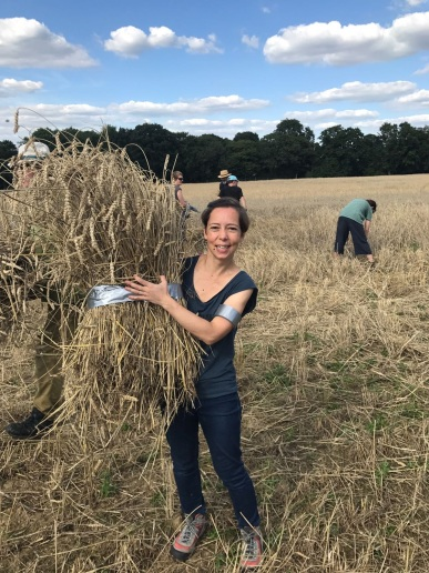 Harvest day with Brockwell Bake